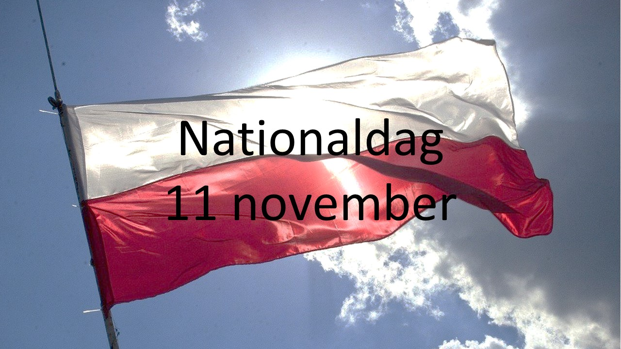 Polska nationaldagen