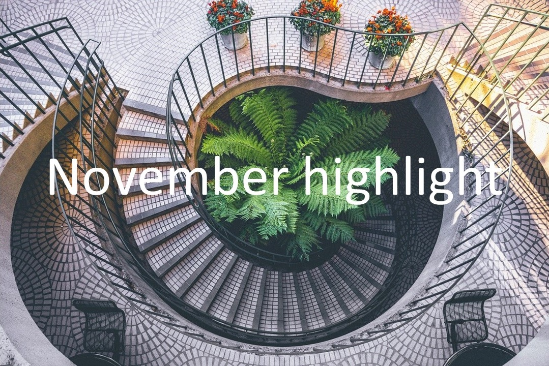 November highlight