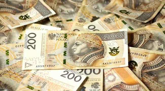 översättare-polska-pengar