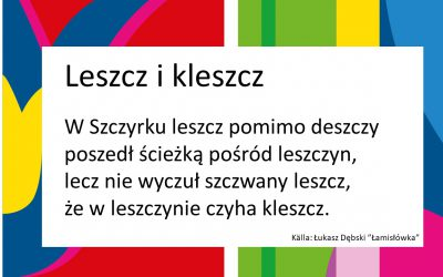 Hur många konsonanter har polskan?